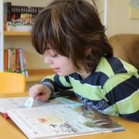 Schulbibliothek-mittel